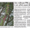 Un militant FN accroché à un arbre Quai du Rimport (RL du 01/03/17)