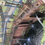Sauvons le canal de Jouy, magnifique patrimoine de Metz