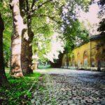 Site des Anciens Frigos : F. Grolet pose la question du financement et de la sécurité
